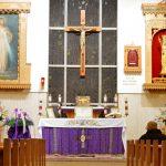 Carmelite Shrines, Munster image